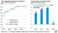 Short-Term Energy Outlook - U.S. Energy Information ...