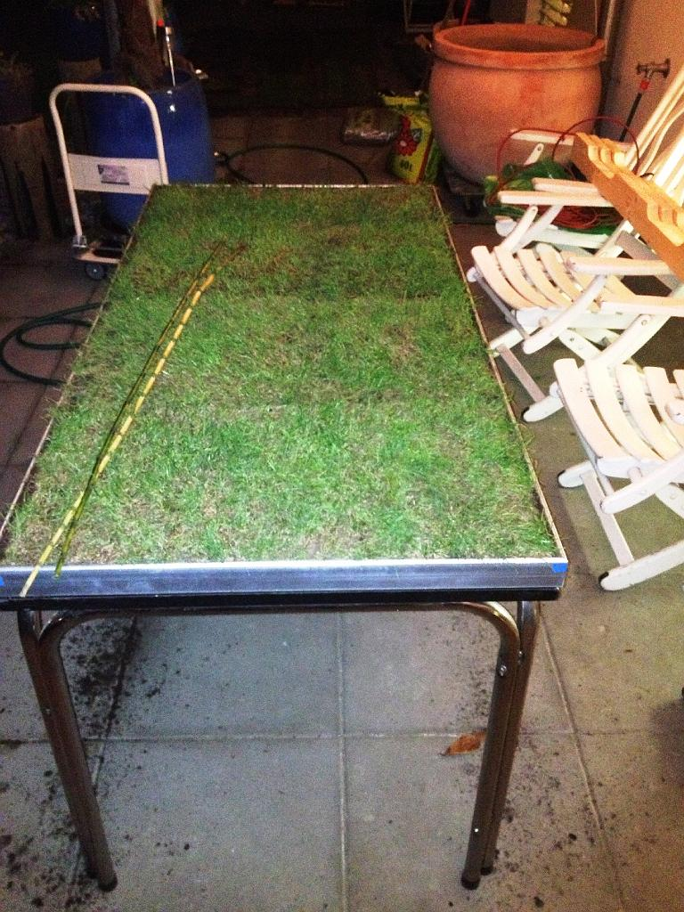 GrasTable Gras Table Rollrasen