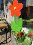 Blume und Osternest