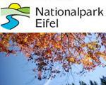 Herbst im Nationalpark
