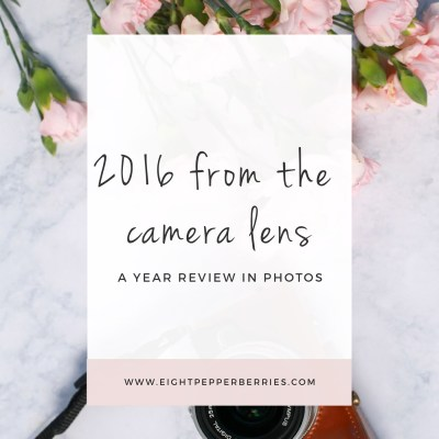 2016 From The Camera Lens