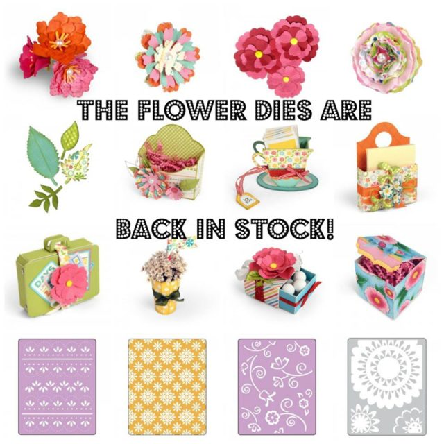 Eileen Hull Paper Flower Party and Re-released Sizzix Favorites