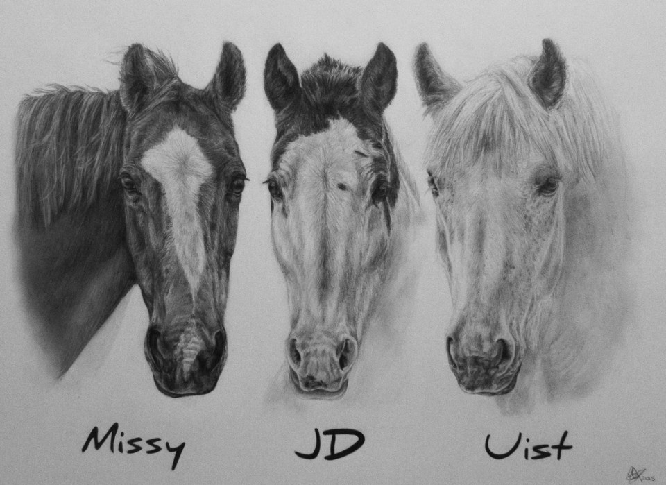 Missy, JD and Uist