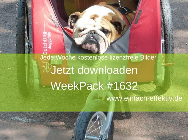 WeekPack-1632 – Kostenlose Fotos
