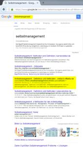 SEO-selbstmanagement-google-suche