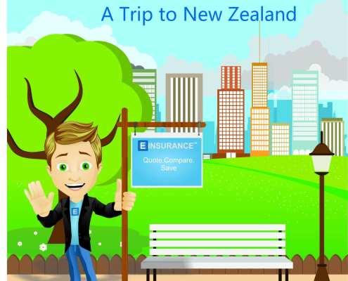 rental car insurance a trip to New Zealand