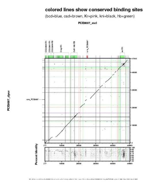 small resolution of region plot region plot detail dotplot