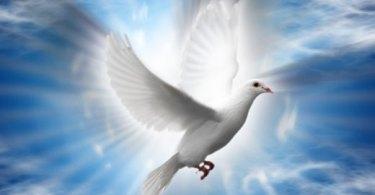 Você está cheio do Espírito Santo?