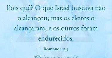 Deus endureceu o coração dos Judeus, em parte, para que você, Cristão, fosse salvo.