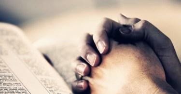 """""""Alegrem-se na esperança, sejam pacientes na tribulação, perseverem na oração."""""""
