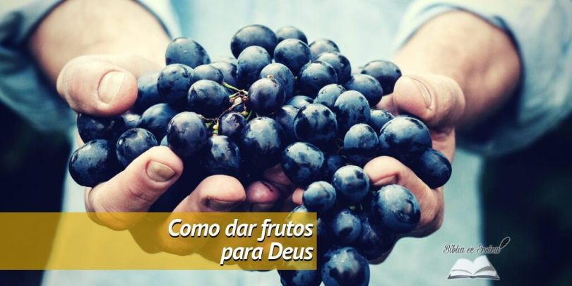 8 passos para ser um cristão que dá bons frutos para Deus (o 3º é indispensável)