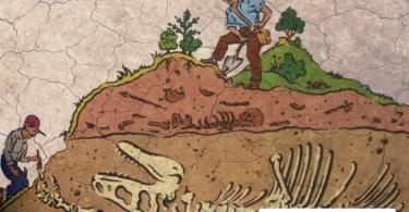 15 de Junho - Dia do Paleontólogo