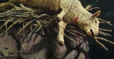 Sacrifício Cordeiro