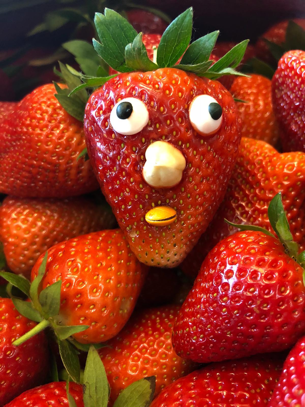 Erdbeer Eiszeit  Eistorten Shop