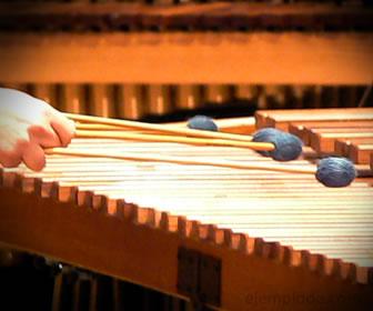 Ejemplo de Instrumentos de percusin