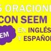 25 Oraciones Con Seem En Inglés ✔ Frases Con Seem ⚡