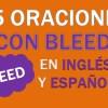 25 Oraciones Con Bleed En Inglés ✔ Frases Con Bleed ⚡