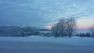 Centre-de-la-Jumenterie-sous-la-neige01-EJN02
