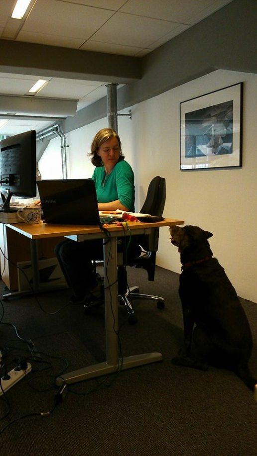 Maria and beloved canine coworker Teasle (RIP).