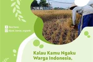 beras hasil petani