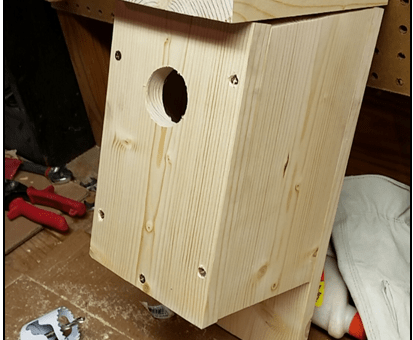 We're building nestboxes!