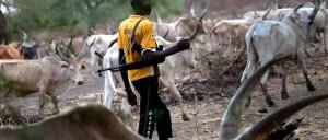 Again, Herdsmen Invade Southern Kaduna, 9 Killed, Several Injured, Houses Razed