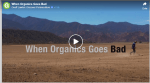 When organic goes bad