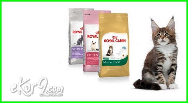 10 Merk Makanan Kucing yang Berkualitas dan Terlaris