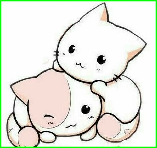 gambar kucing animasi lucu imut comel banget