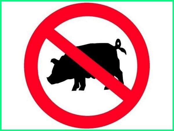 apakah babi haram menurut kristen dipegang disentuh apa alasan bagi islam itu hutan bulu daging taring kulit dalam injil benarkah anjing dan dimakan kenapa untuk agama orang mengapa tapi diciptakan di al quran umat secara ilmiah muslim namun kalau jika diharamkan