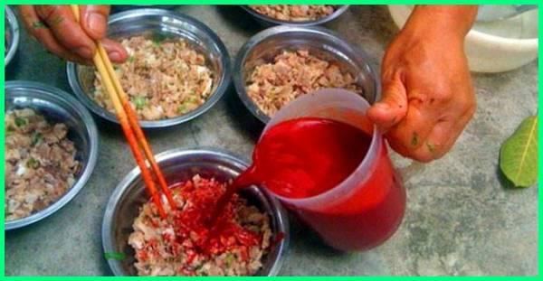 makanan terbuat dari darah hewan