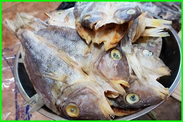jenis ikan asin di pasar, jenis ikan air asin, jenis ikan air asin dan gambarnya, jenis ikan air asin di indonesia, jenis ikan air asin dan nama latinnya, jenis ikan asin belah