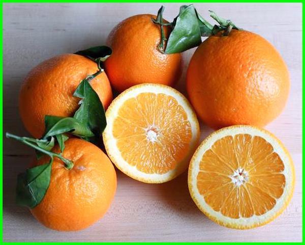 jenis jeruk manis unggul, jenis jeruk manis unggulan, jenis jeruk manis tanpa biji, jenis jeruk yang manis, jenis jeruk kecil manis, jenis jeruk paling manis, jenis buah jeruk yang manis, jenis jeruk yang paling manis, jenis jeruk yg paling manis, jenis jeruk yang rasanya manis