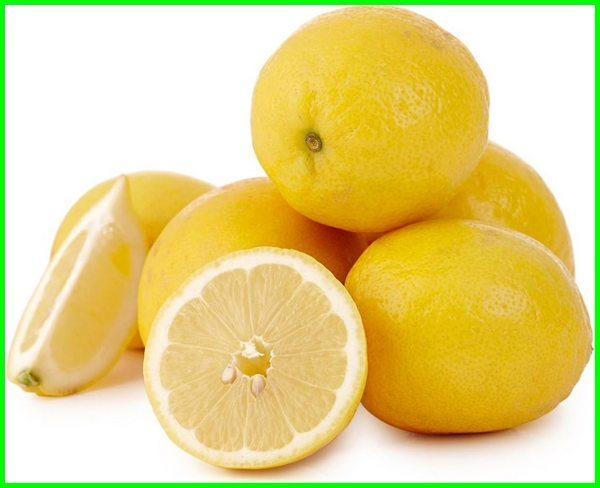 jenis jeruk lemon california, jenis jeruk lemon australia, jenis jeruk lemon dan gambarnya, jenis jeruk lemon impor, jenis jeruk lemon import
