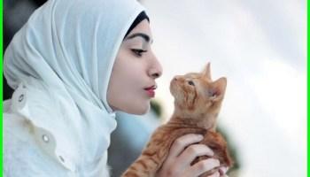 6 Nama Kucing Islami Terbaik Dunia Fauna Hewan Binatang Tumbuhan Dunia Fauna Hewan Binatang Tumbuhan