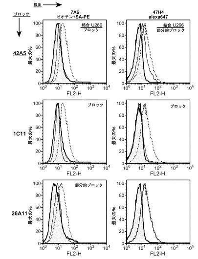 アポトーシス性抗IgE抗体