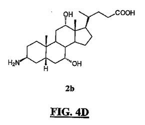 ガストリン放出ペプチド化合物