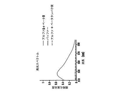 タンパク質相補によるリアルタイムインビボ核酸検出