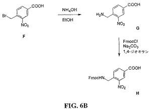 改善されたガストリン関連ペプチド化合物