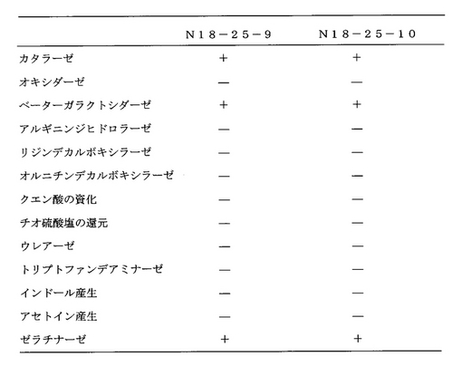 【0027】