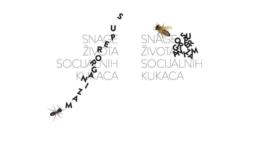 """Superorganizam"