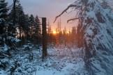 Impressionen aus dem Harz - 2