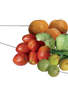 Fig some sources of vitamin  also components food cbse class ekshiksha rh