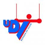 Logo_UDI_kleur