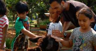 Sensitising Children to Wildlife