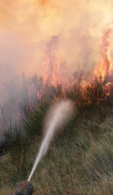 FOTO | Canzano, rogo nei pressi del campo sportivo: bruciati 18 ettari