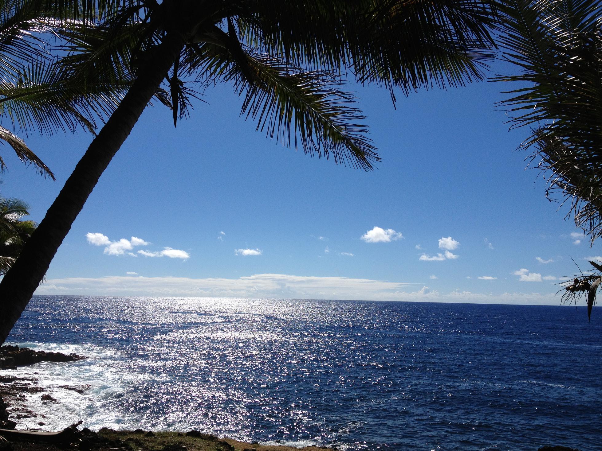 あなたの知らないハワイに出会う!vol.2<br>~マナを増やして幸運を引き寄せよう!~