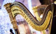 世界中の神話に登場する最古の楽器「ハープ」が持つ癒しの力