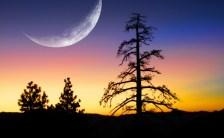 《 2016年8月3日 5時44分はしし座の新月です! 》