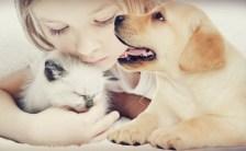 カリスマオネエセラピストTO-RU愛のおしおきレッスンPART15 「ペットに学ぶ恋愛学」珍獣? でもイケメンにモテるための心得5選